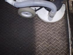 Không chỉ là giặt sạch thảm mà còn loại trừ khuẩn hại