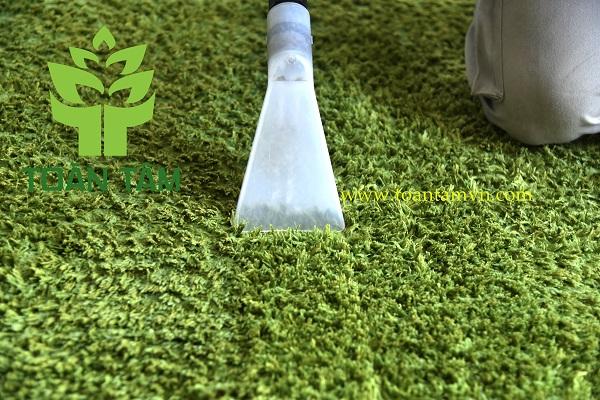Tại sao nên chọn dịch vụ giặt thảm chuyên nghiệp ?