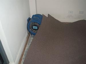 Giặt thảm - giặt sofa không đúng cách gây hậu quả nghiêm trọng