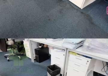 Giặt thảm và những điều người dùng cần biết