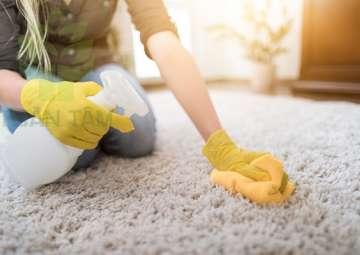 Xử lý mùi hôi trên thảm