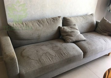 Cách xử lý ghế sofa bị mốc tại nhà