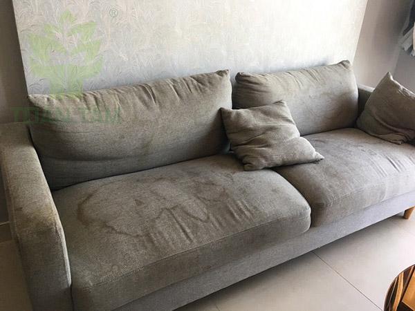 Ghế sofa bị mốc do nhiều nguyên nhân