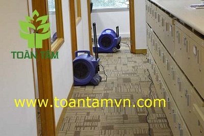 giặt thảm văn phòng- hổ trợ thổi khô thảm sau khi giặt