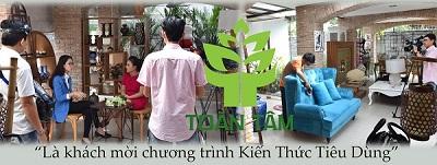 giặt ghế sofa - khách mời chương trình kiến thức tiêu dùng